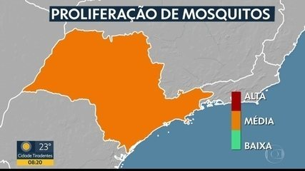 Moradores de SP reclamam de infestação de pernilongos e mosquitos na cidade