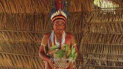 Indígenas no PA cobram autoridades para garantia da saúde indígena na pandemia de Covid-19