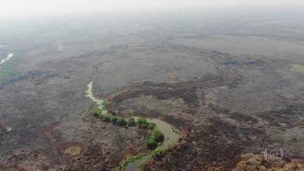 Ano de 2020 já é o pior da história do Pantanal em número de queimadas, diz Inpe