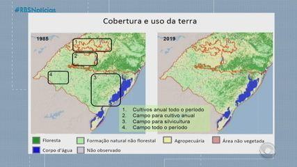 Pampa gaúcho perdeu 21% da vegetação nos últimos 30 anos