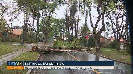 Temporal que atingiu Curitiba derrubou várias árvores e deixou muita gente sem luz