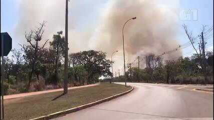 Incêndio atinge área de proteção do Palácio do Jaburu, em Brasília