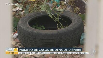 Aumento do número de casos de dengue causa preocupação no norte da Bahia