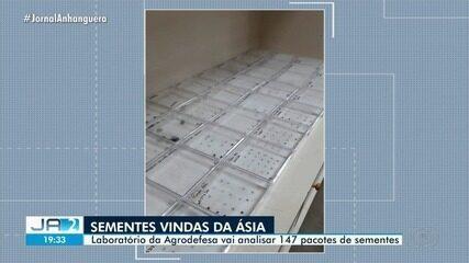 Sementes do exterior são avaliadas pelo laboratório de Defesa Agropecuária de Goiânia