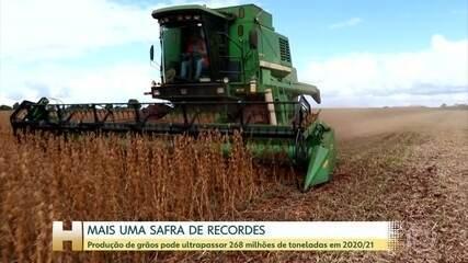 Safra de grãos deve bater novo recorde em 2020/2021, segundo Conab