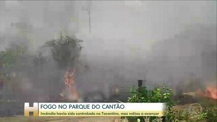 Fogo avança no Parque do Cantão, em Tocantins