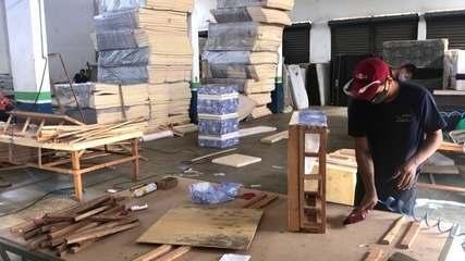 Fábrica de colchões passa a produzir cama para pets durante a pandemia e dobra faturamento