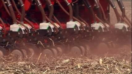 Seca prejudica plantio de soja no Paraná