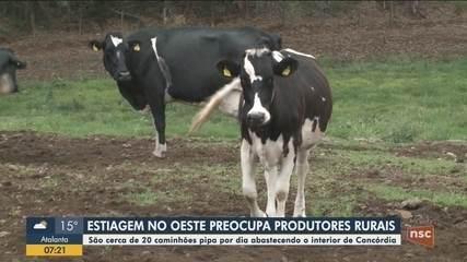 Estiagem no Oeste preocupa produtores rurais