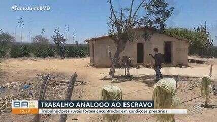 Trabalhadores são encontrados em situação análoga à escravidão em fazendas da região norte
