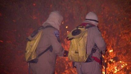Ibama alega falta de verba e suspende combate a incêndios florestais