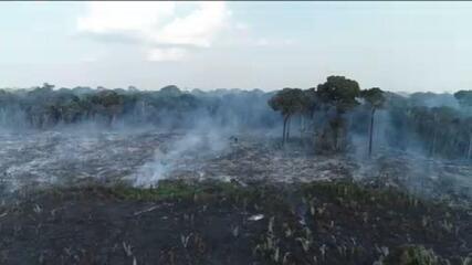 Amazônia tem 89.734 focos de calor em 2020, ultrapassando 2019