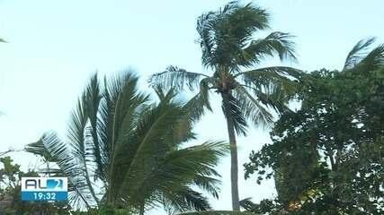 Ventos se intensificam na faixa litorânea de Alagoas