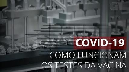 Entenda como funcionam os testes da vacina contra Covid