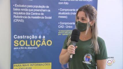 Pesquisa em Paraguaçu Paulista faz levantamento sobre abandono de animais