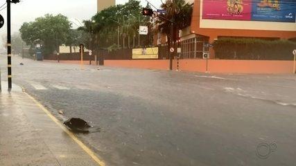 Chuva forte com ventos causa estragos em Bauru