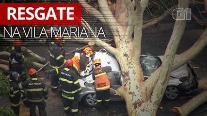 Árvore cai em cima de carro na Vila Mariana