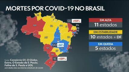 Brasil ultrapassa 174 mil mortes por Covid, com 669 em 24 horas