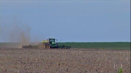 Seca gera prejuízos para os produtores de soja em Mato Grosso