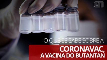O que se sabe sobre a Coronavac, a vacina do Instituto Butantan