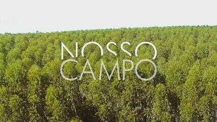 Confira o 3º bloco do Nosso Campo deste domingo, 17 de janeiro