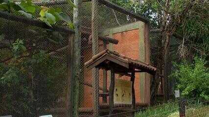 Um mês após estragos da chuva, Zoológico e Jardim Botânico reabrem ao público em Bauru