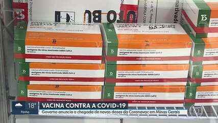 Governo de Minas anuncia que novas doses da Coronavac chegam amanhã ao estado