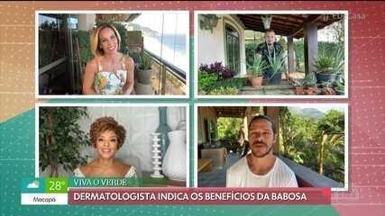 Dermatologista Hadassa Barros fala sobre benefícios da babosa