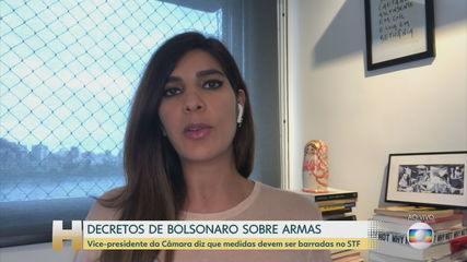 Vice da Câmara diz que Bolsonaro invadiu competência do Congresso ao editar decretos sobre armas