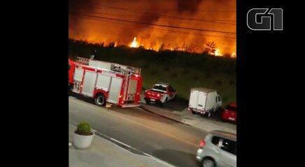 Incêndio atinge vegetação em Salvador