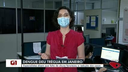 Casos de dengue dimunuíram no ES