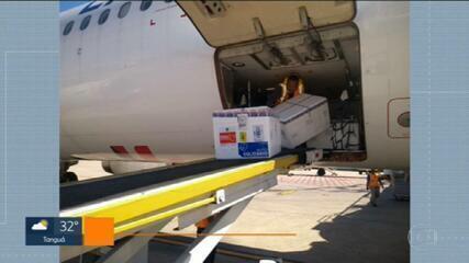 Rio recebe carga com quase 250 mil doses da vacina CoronaVac