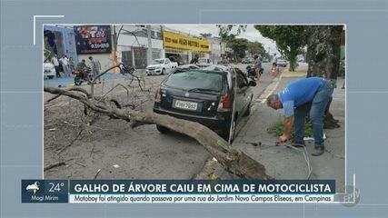 Câmera flagra momento em que galho cai em cima de motorista em Campinas; veja