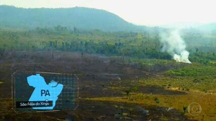 Município de São Félix do Xingu, no Pará, é um dos maiores poluidores de planeta