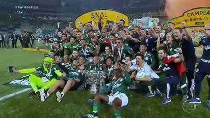 Palmeiras vence o Grêmio e é o campeão da Copa do Brasil
