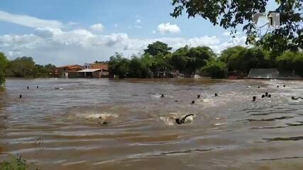 Ponte desaba no rio Mearim, em Bacabal