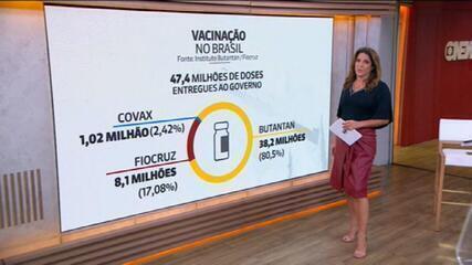 Entenda como se dá a produção e a distribuição de vacinas no Brasil