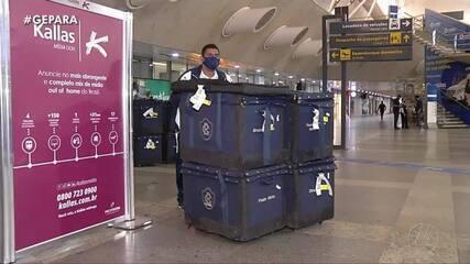 Remo retorna a Belém com classificação na Copa do Brasil na bagagem