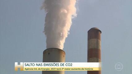 Emissões globais de CO2 terão segundo maior aumento da história em 2021, diz Agência Internacional de Energia