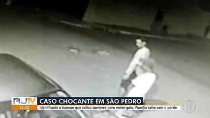 Polícia identifica e intima homem que soltou pitbull para matar gato em São Pedro d'Aldeia