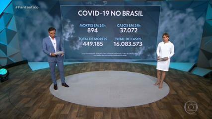 Brasil registra 894 mortes por Covid e se aproxima das 450 mil vítimas fatais