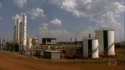 Conheça a 1ª usina do Brasil a gerar energia elétrica em escala comercial com resíduos da cana