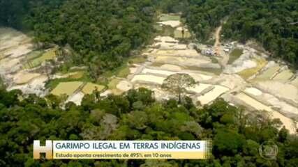 Garimpo em terras indígenas cresceu 495% em dez anos