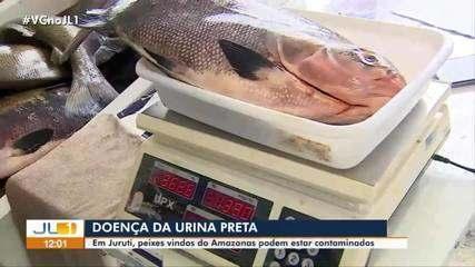 Prefeitura de Santarém faz reunião emergencial sobre medidas de prevenção à 'Urina Preta