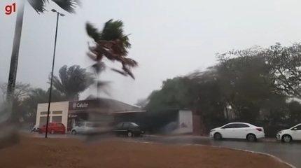 Temporal com granizo derruba árvores e causa estragos em vários pontos da capital acreana