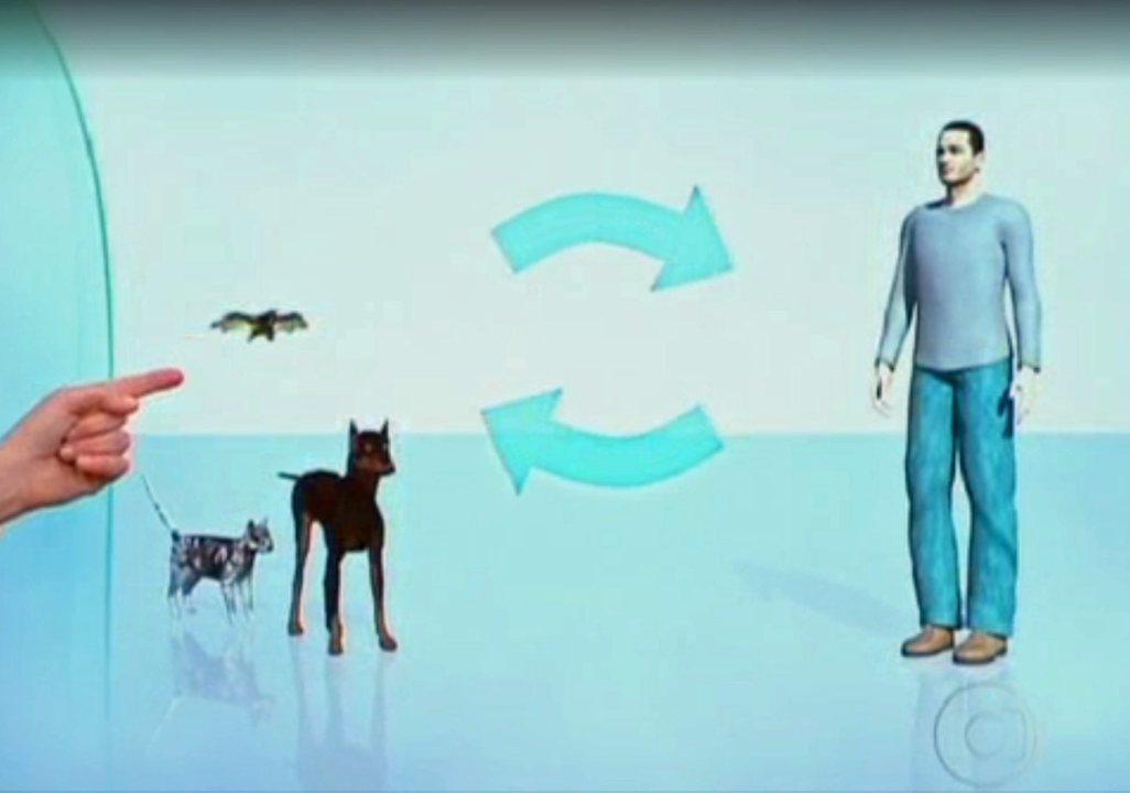Entenda como o vírus da raiva age no corpo humano - (Programa Bem Estar, exibido em 18/01/2012)
