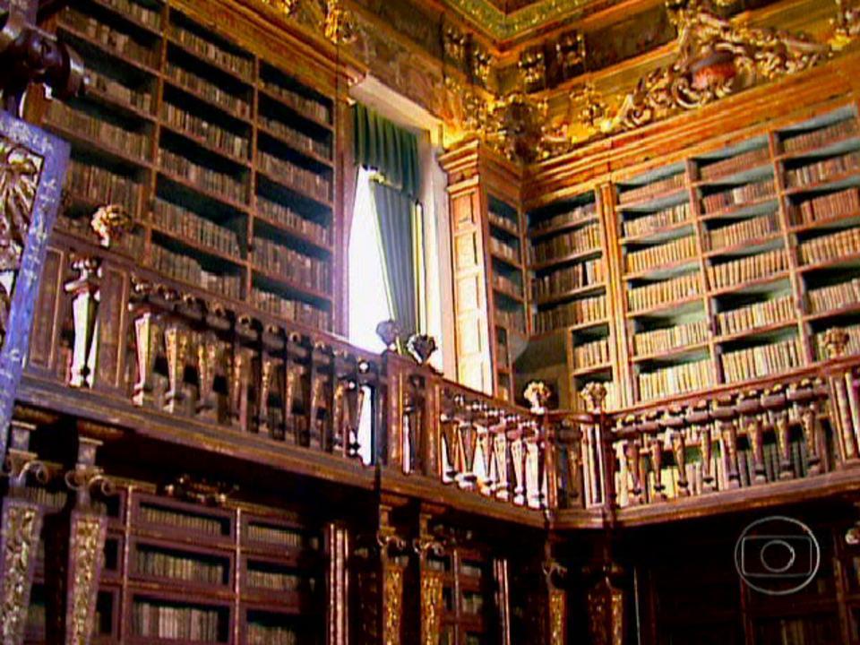 Universidade de Coimbra usa morcegos para combater traças na biblioteca