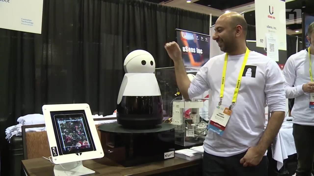 Conheça Kuri, o robô que gosta de carinho