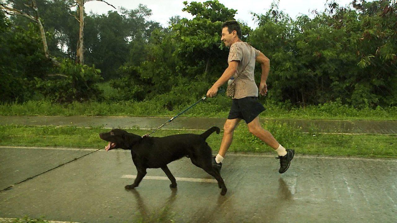 Repórter Mirante mostra a relação entre os cães e seus donos