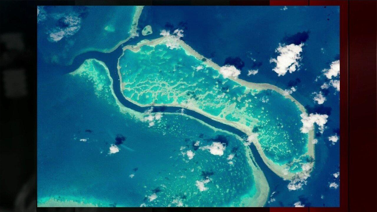 Aumento da temperatura da água dos oceanos está matando corais da Austrália